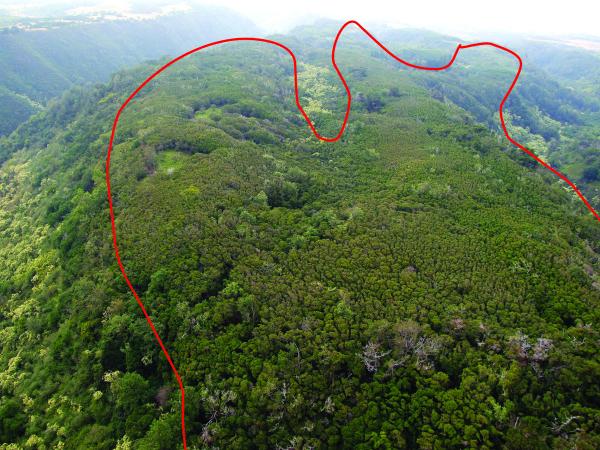 Mahana Ridge, Kapalua, HI