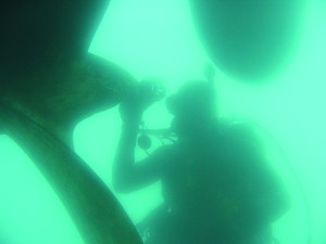 A diver inspects a propeller for biofouling. Photo courtesy of Hawaii DLNR-DAR