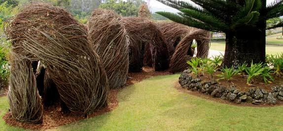 sculpture on display at the Hui No'eau Visual Arts Center was made out of strawberry guava, eucalyptus, and white ash.