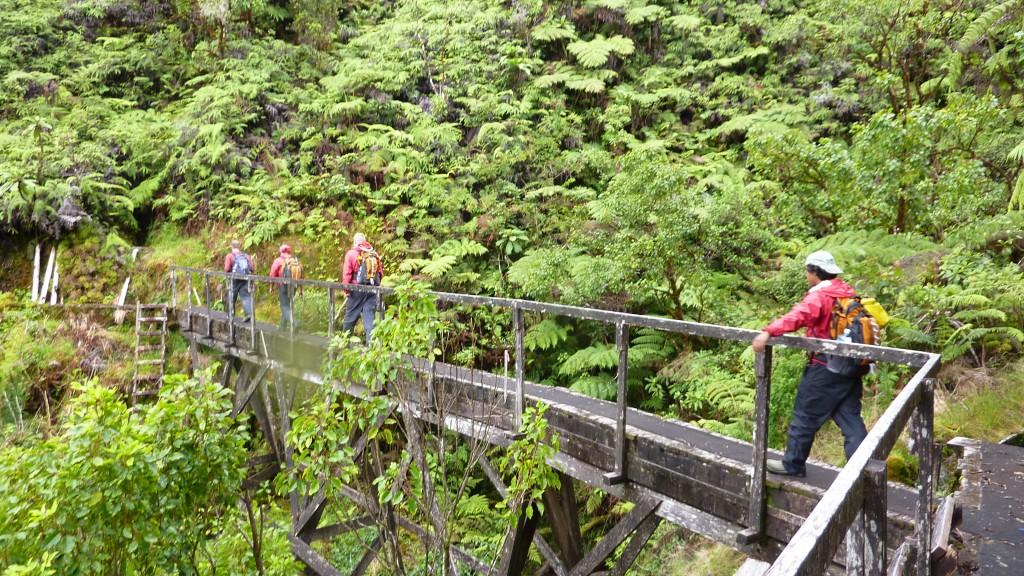 The boardwalk running along the Waikamoi flume...the easy part.